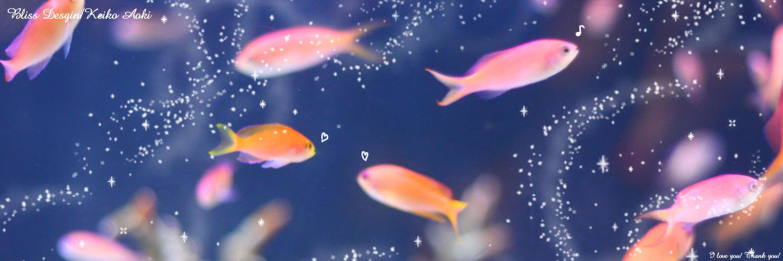 twitter 夏っぽいヘッダー画像 熱帯魚