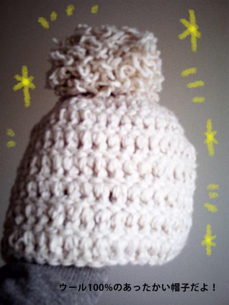 PICT0063帽子